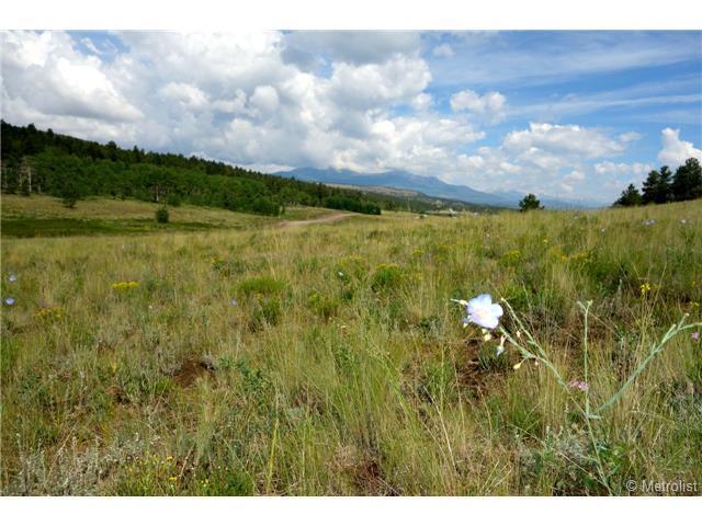 2160 Windmill Drive, Hartsel, CO 80449 (MLS #9044887) :: 8z Real Estate