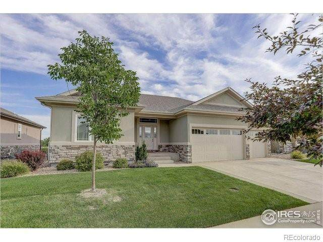 8205 Surrey Street, Greeley, CO 80634 (#9059023) :: My Home Team