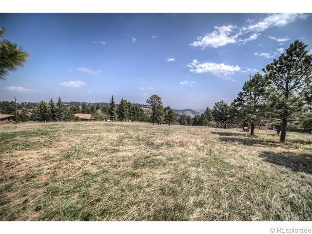 79 Dekker Drive, Golden, CO 80401 (#9084763) :: Hometrackr Denver
