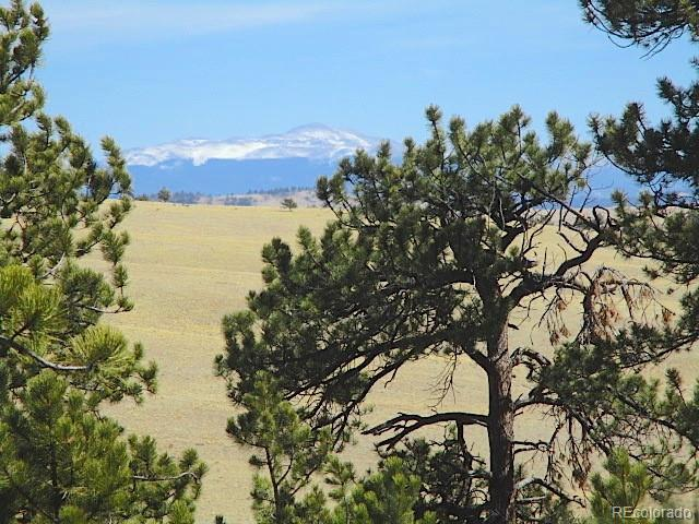 00 Marca Monte Trail, Hartsel, CO 80449 (#9138118) :: Hometrackr Denver