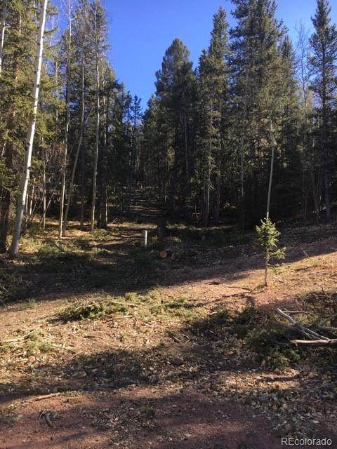 1340 Calcite Drive, Divide, CO 80814 (MLS #9138349) :: 8z Real Estate