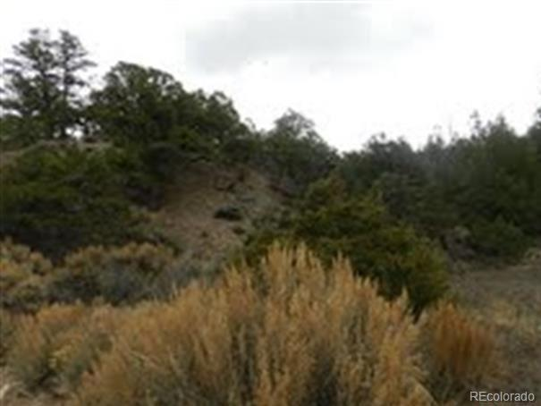 1 Wildhorse Drive, San Luis, CO 81152 (#9148982) :: Bring Home Denver