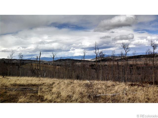 1307 Little Baldy Road, Fairplay, CO 80440 (MLS #9158884) :: 8z Real Estate