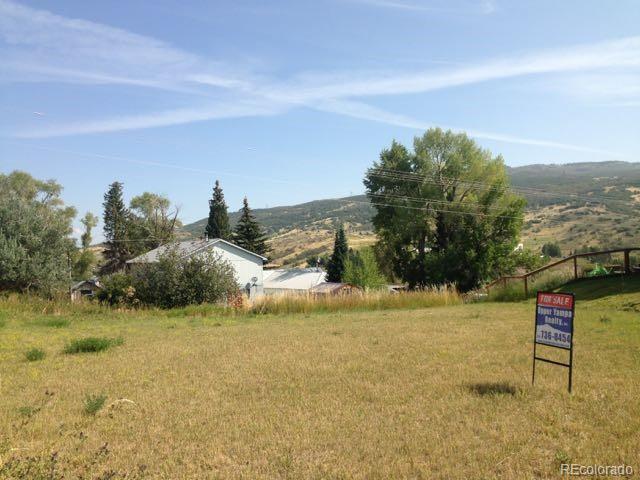 135 Oak Ridge Circle, Oak Creek, CO 80467 (MLS #9158959) :: 8z Real Estate