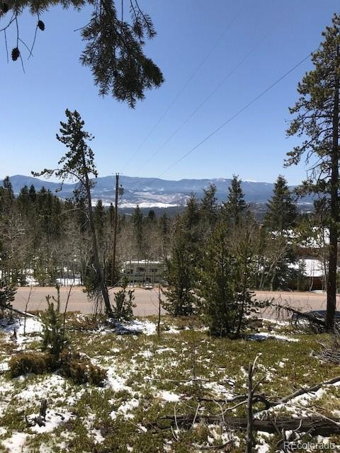 11272 Conifer Mountain Road, Conifer, CO 80433 (#9165246) :: The DeGrood Team