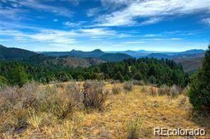 31625 Half Peak Trail, Pine, CO 80470 (#9167857) :: The Colorado Foothills Team | Berkshire Hathaway Elevated Living Real Estate