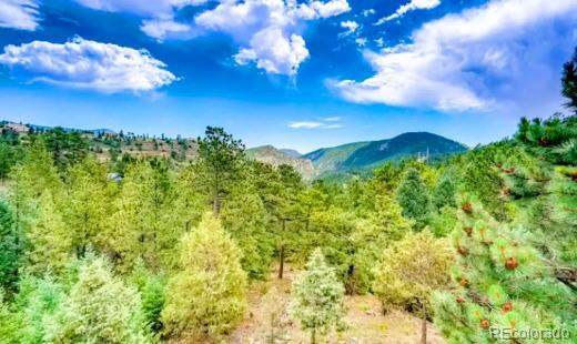 000 Old Little Bear Creek Road, Idaho Springs, CO 80452 (#9193511) :: The Colorado Foothills Team | Berkshire Hathaway Elevated Living Real Estate