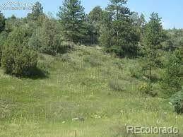 0000 Streamside Drive, Glen Haven, CO 80532 (#9273176) :: Sultan Newman Group