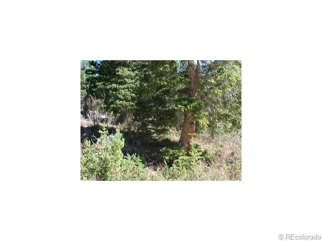 Lot 34 Mine Road, Idaho Springs, CO 80452 (MLS #9308766) :: 8z Real Estate