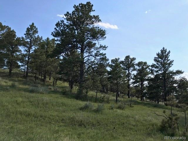 40362 Gold Nugget Drive, Deer Trail, CO 80105 (#9345289) :: The Tamborra Team