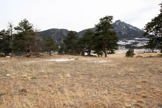 3000 Grey Fox Drive, Estes Park, CO 80517 (#9426995) :: The Brokerage Group