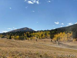 2160 Windmill Drive, Hartsel, CO 80449 (MLS #9439954) :: Bliss Realty Group