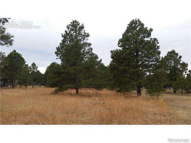 19720 Furrow Road, Monument, CO 80132 (MLS #9516048) :: 52eightyTeam at Resident Realty