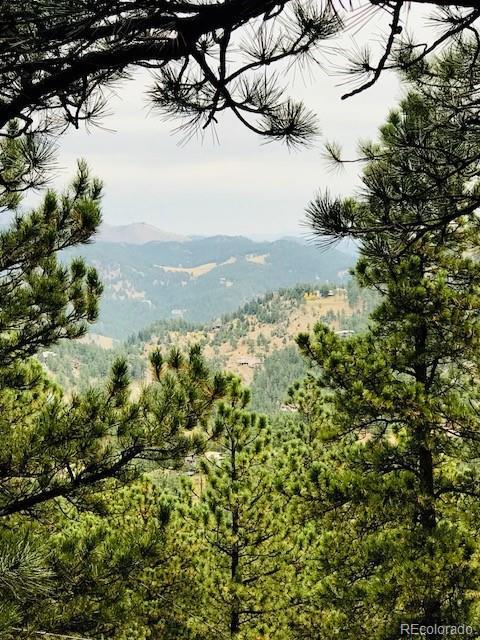 1197 Timber Lane, Boulder, CO 80304 (#9606823) :: The DeGrood Team