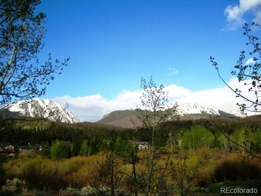 1683 Falcon Circle, Silverthorne, CO 80498 (MLS #9626902) :: 8z Real Estate