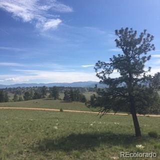 2830 Settele Drive, Hartsel, CO 80449 (MLS #9735000) :: 8z Real Estate