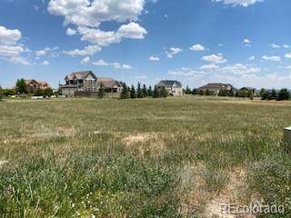 7251 Upton Court, Castle Rock, CO 80104 (#9762436) :: The DeGrood Team