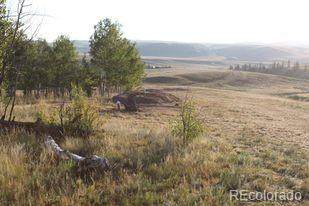 1248 Frees Loop, Hartsel, CO 80449 (#9781424) :: HomeSmart