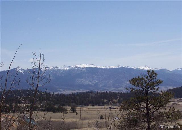 570 Apache Trail, Como, CO 80432 (#9836646) :: The Peak Properties Group