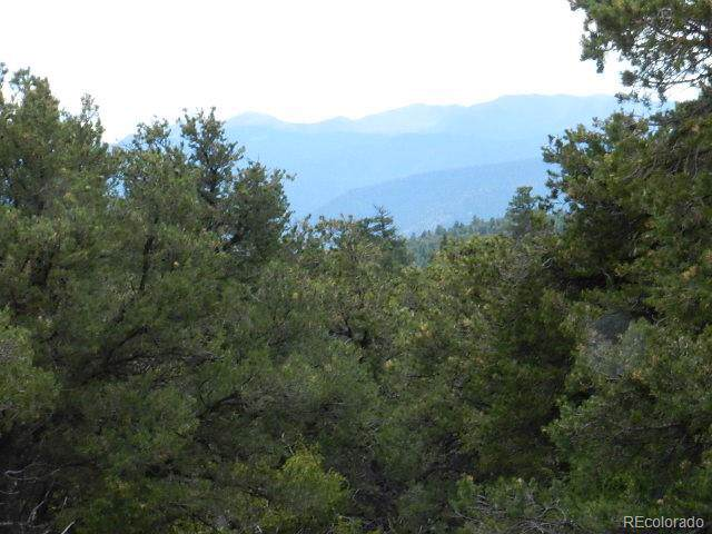 Lot 62 Big Buck Trail, San Luis, CO 81152 (#9930261) :: The DeGrood Team