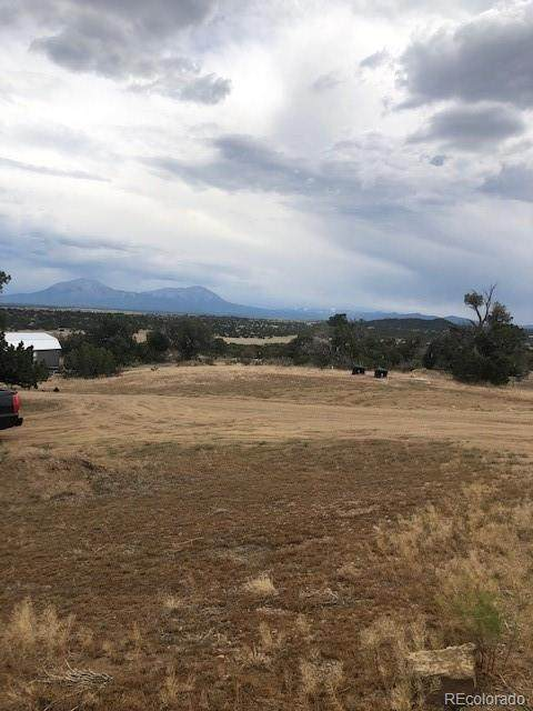 595 Cello Azul Drive, Walsenburg, CO 81089 (MLS #9951885) :: 8z Real Estate