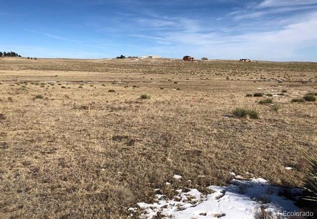 16745 Warriors Path Drive, Peyton, CO 80831 (#9968615) :: Bring Home Denver with Keller Williams Downtown Realty LLC