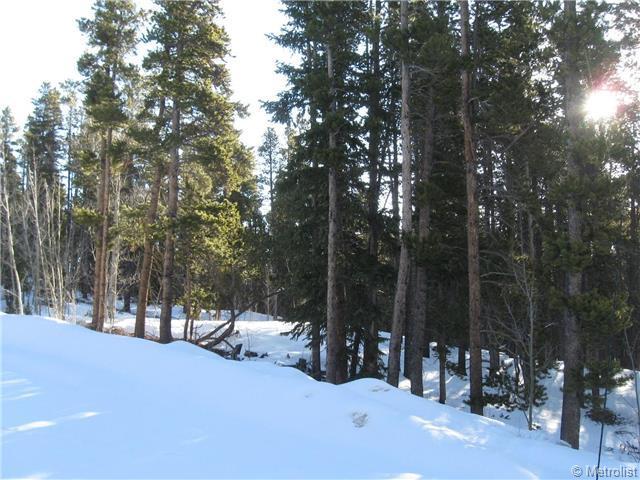 200 Widdowfield Circle, Fairplay, CO 80440 (MLS #1186449) :: 8z Real Estate