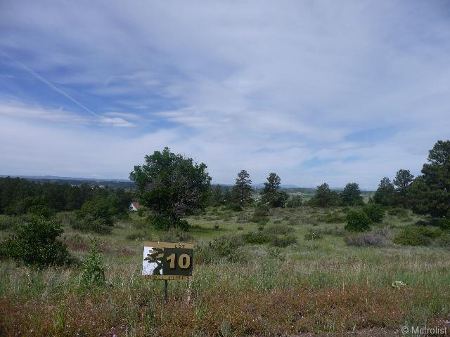 7814 Lost Lake Drive, Franktown, CO 80116 (MLS #1211875) :: 8z Real Estate
