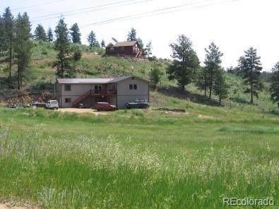 12597 S Paulette Ave, Pine, CO 80470 (#1968510) :: The DeGrood Team