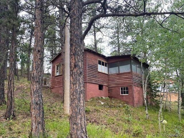 114 Appleby Street, Bailey, CO 80421 (#2033595) :: Kimberly Austin Properties