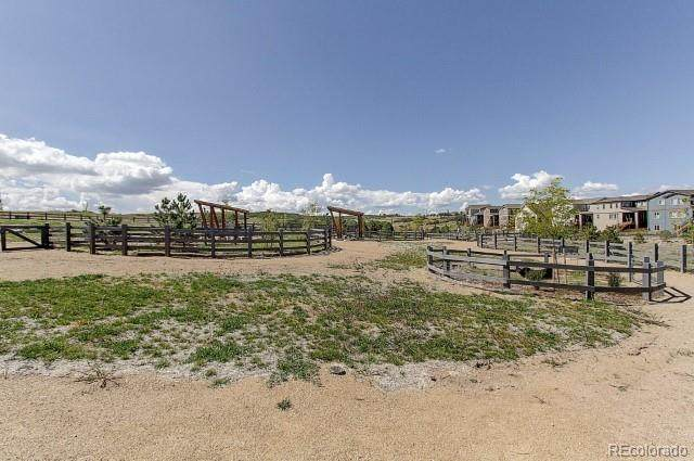 1548 Wingfeather Lane, Castle Rock, CO 80108 (#2158254) :: The DeGrood Team