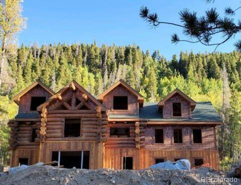733 Rainbow Road, Idaho Springs, CO 80452 (#2772080) :: The Griffith Home Team