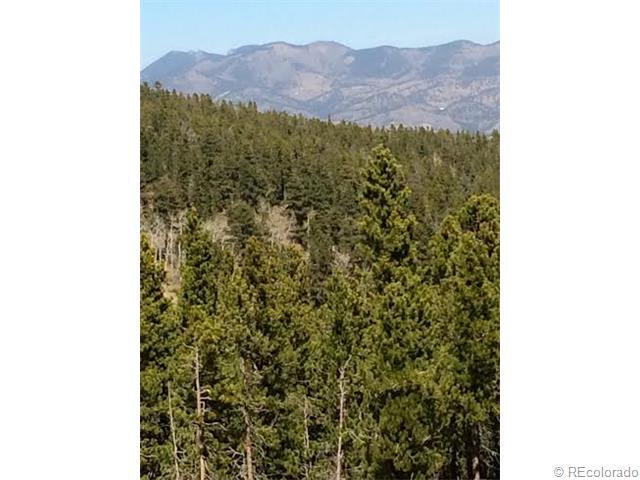 1 Lodgepole Drive, Evergreen, CO 80439 (MLS #3527606) :: 8z Real Estate