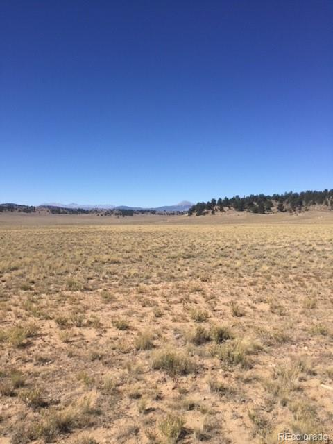 000 Co Road 53, Hartsel, CO 80449 (#3556592) :: 5281 Exclusive Homes Realty