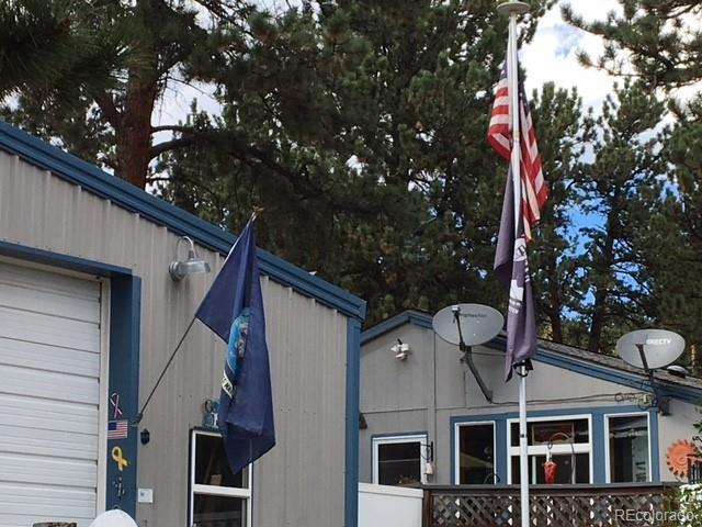 45 Gray Street, Bailey, CO 80421 (#3677988) :: Bring Home Denver