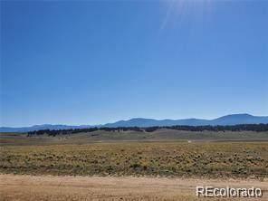 733 Cherokee Trail, Hartsel, CO 80449 (#3726673) :: Wisdom Real Estate