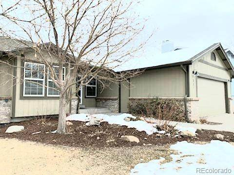 531 Snowy Owl Place, Highlands Ranch, CO 80126 (#3869391) :: Colorado Home Finder Realty