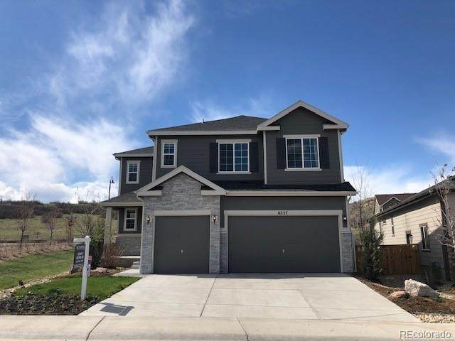 6257 Agave Avenue, Castle Rock, CO 80108 (#3987944) :: The Griffith Home Team