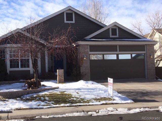 17074 Motsenbocker Way, Parker, CO 80134 (MLS #4031603) :: Colorado Real Estate : The Space Agency