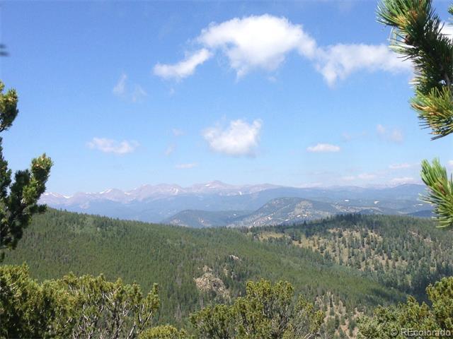 1 Beaver Brook Canyon Road - Photo 1