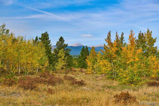 Parcel 21 A Bald Mountain Road, Central City, CO 80427 (#4362835) :: The Gilbert Group