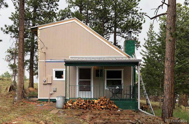 117 S Pine Drive, Bailey, CO 80421 (MLS #4857745) :: 8z Real Estate