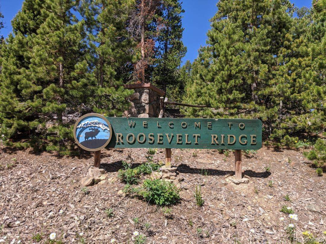 8 Roosevelt Ridge - Photo 1