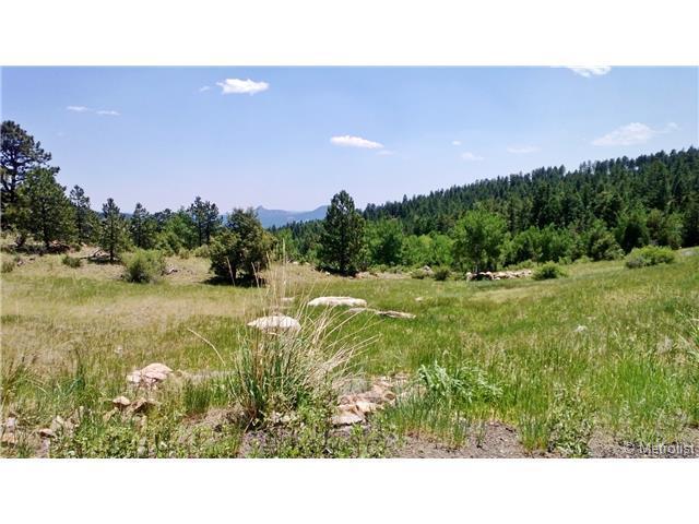 15066 Wilson Peak Trail, Pine, CO 80470 (MLS #5018638) :: 8z Real Estate