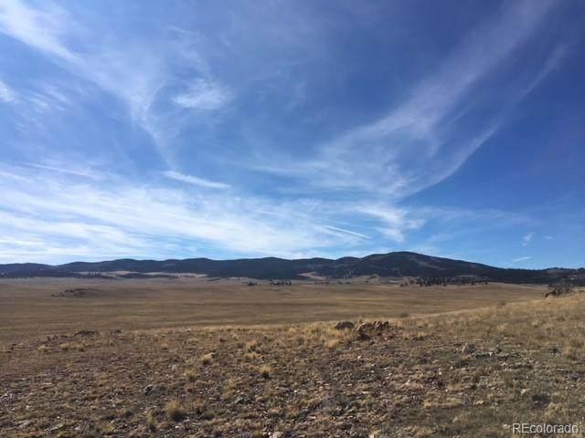 749 Pack Saddle Road, Hartsel, CO 80449 (#5028441) :: The DeGrood Team