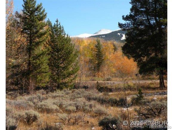 114 Empire Circle, Leadville, CO 80461 (MLS #5124543) :: 8z Real Estate