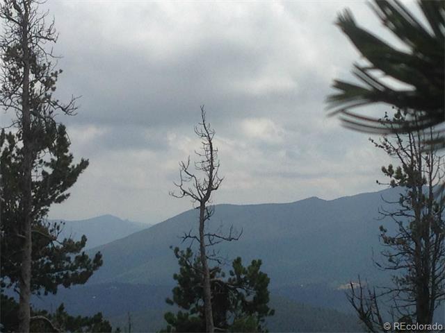2 Beaver Brook Canyon Road - Photo 1