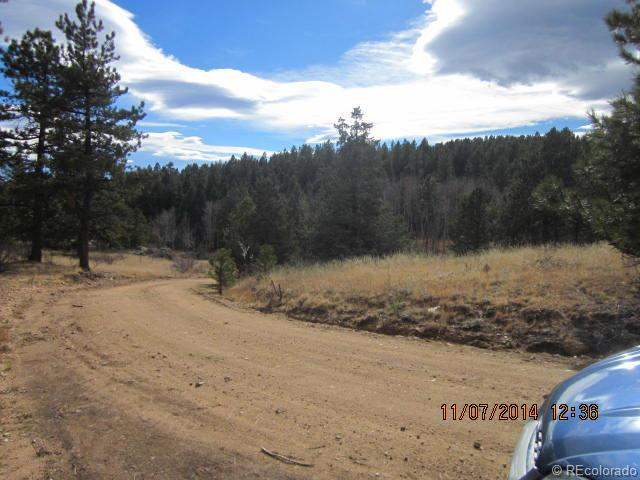 29315 S Sunset Trail, Conifer, CO 80433 (MLS #5656698) :: 8z Real Estate