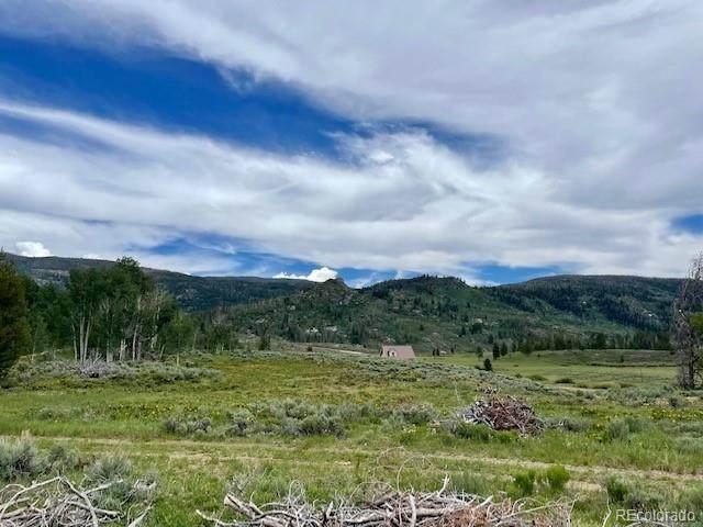 33596 Seneca Trail, Oak Creek, CO 80467 (MLS #5681673) :: Bliss Realty Group