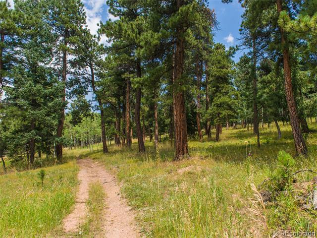 0000 Hwy 285, Conifer, CO 80433 (MLS #5763092) :: 8z Real Estate